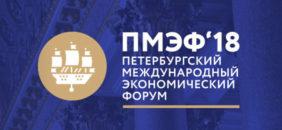 «АЕГЭ-АЭРО» – активный участник организации «ПМЭФ-2018»
